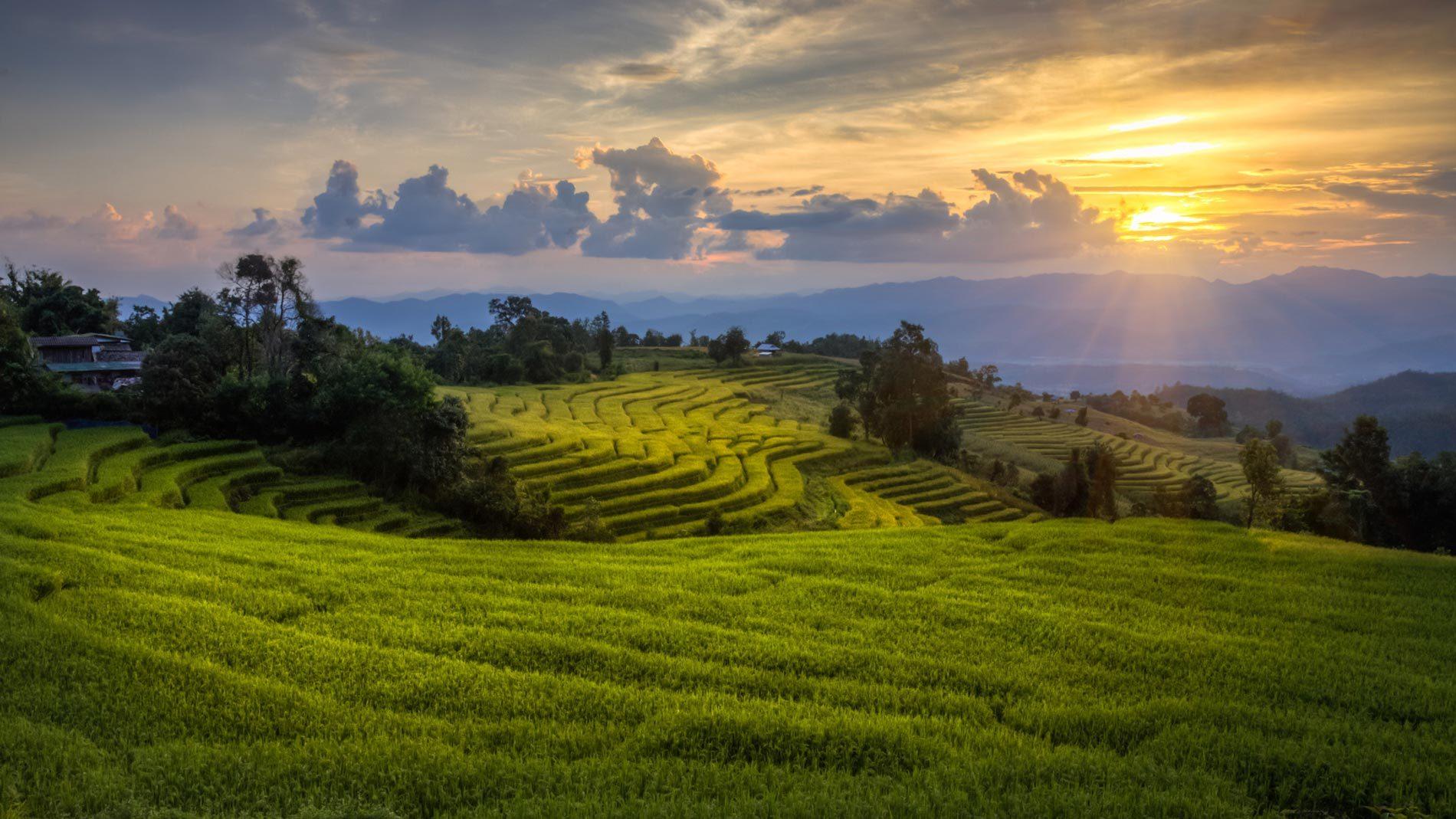 LOLEI TRAVEL – Vietnam